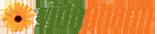 Vidapharm Logo