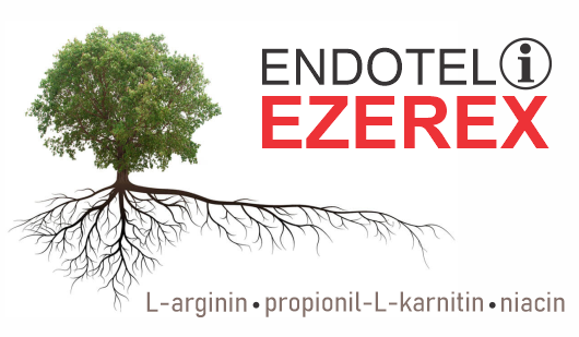 ezerex i l-arginin za oporavak endotela krvnih sudova